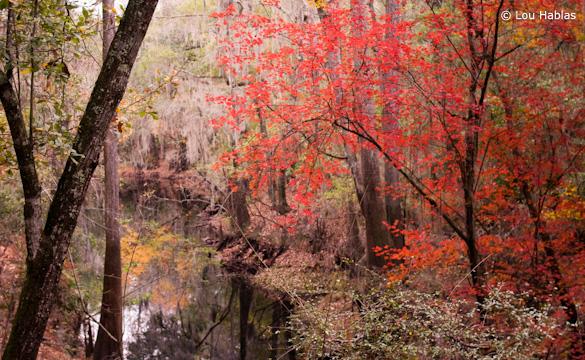 """""""Ogden Lake II"""" by Joe Hablas"""