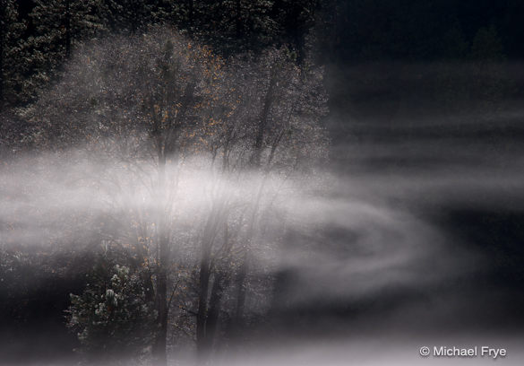 40. Swirling mist, El Capitan Meadow