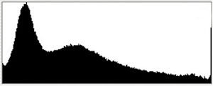 The most important parts of a histogram are the right and left edges. This histogram shows pixels pushed up against both edges, indicating overexposed highlights and underexposed shadows.
