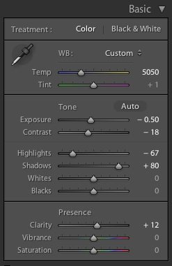 Basic Panel settings in Lightroom for the final, processed image (at the top of this post)
