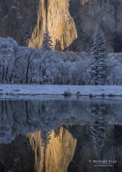El Capitan reflected in the Merced River, Yosemite NP, CA, USA
