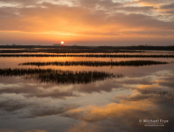 Sunrise in a San Joaquin Valley marsh, CA, USA