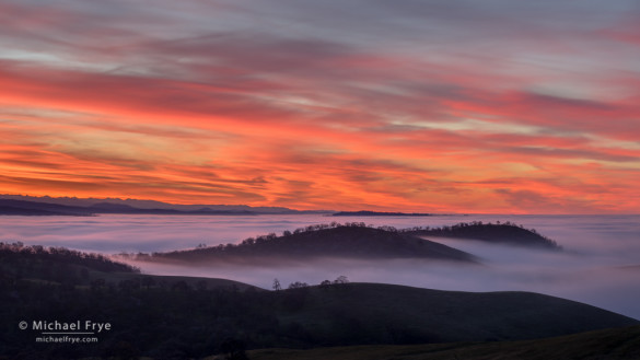 Sunrise above a fog layer, Sierra Nevada foothills, Mariposa County, CA, USA