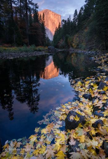El Capitan and the Merced River, autumn, Yosemite NP, CA, USA