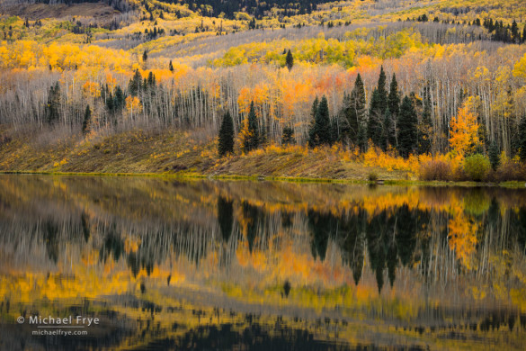 Aspens, firs, and reflections, Woods Lake, Uncompahgre NF, CO, USA